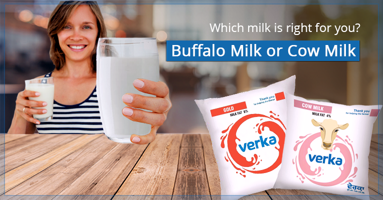 Cow Milk vs. Buffalo Milk- The Differences and Which one is Better for Babies